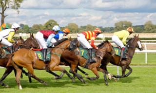 Hvilken hest skal man satse på?